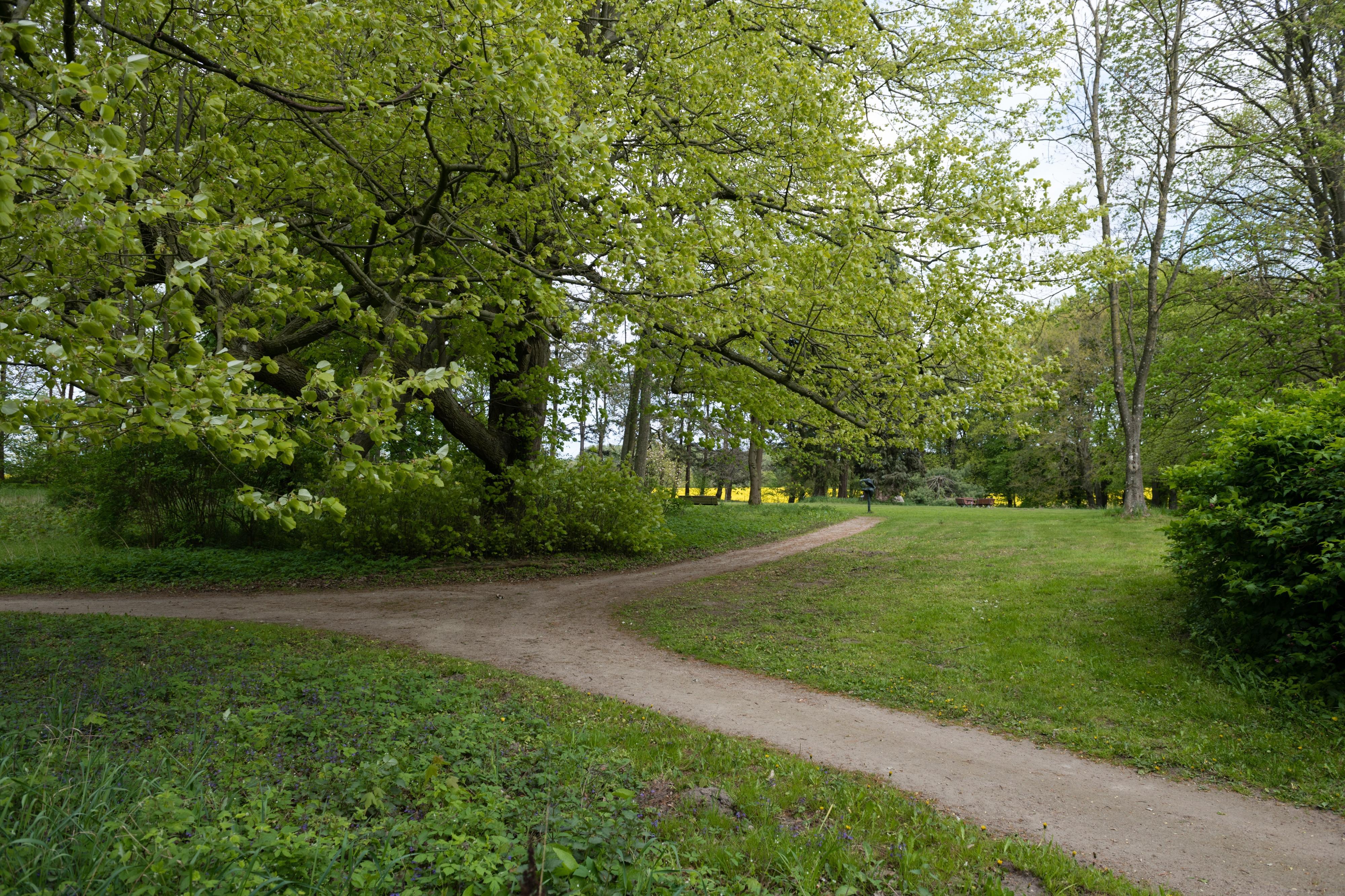 Park am Haus Ingrid